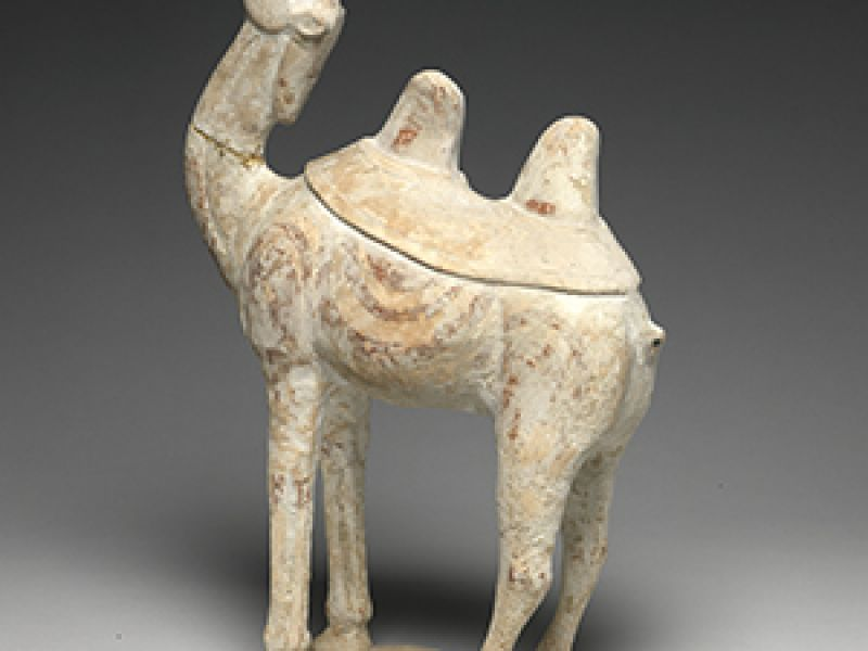 Earthenware Bactrian Camel, Chinese, c. 618-907