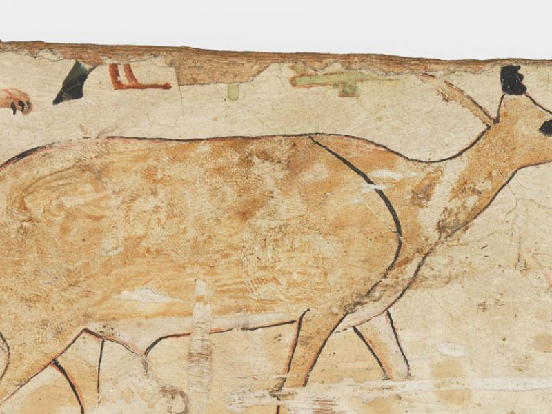 Coffin Fragment of Wepwawetemhat