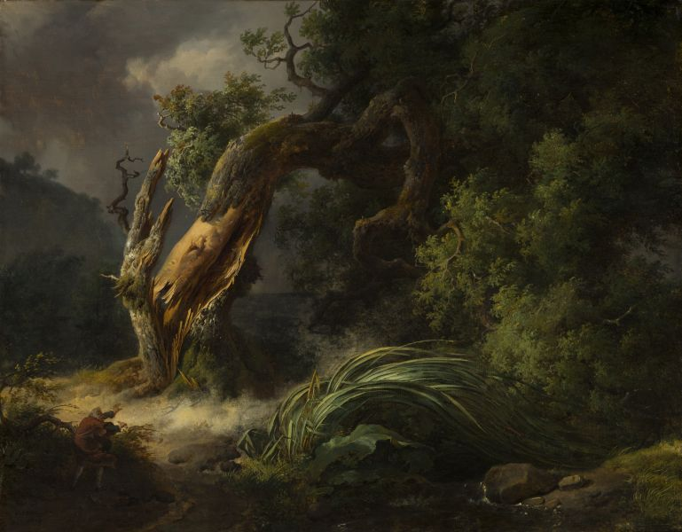 Featured image for the project: The Oak and the Reed
