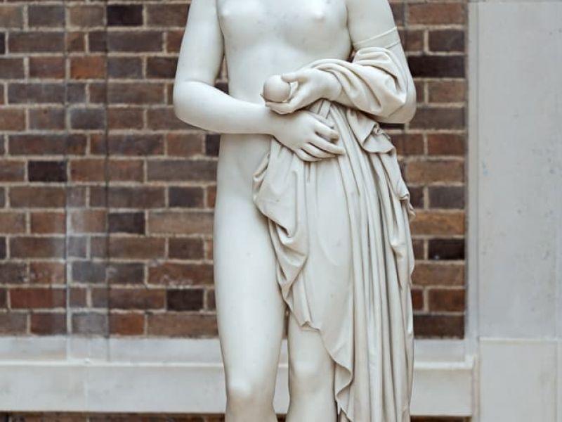 Highlight image for Venus Verticordia
