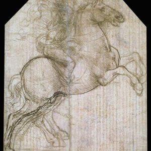 Rider on a rearing horse: Da Vinci