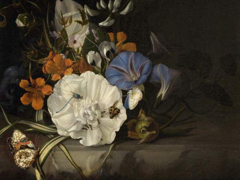 A spray of flowers by Rachel Ruysch