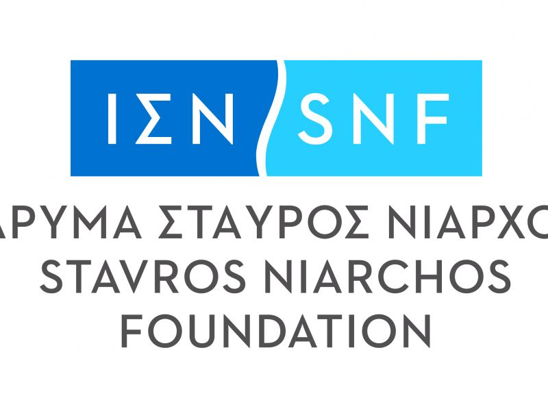 Logo for Stavros Niarchos Foundation