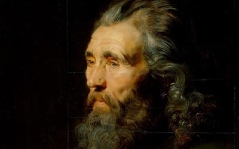 Rubens' Head Study of a Bearded Man